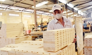 Vietnam sets ambitious $20 billion wood export target for 2025