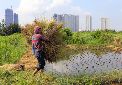 26 years on, HCMC seeks new investors for mega urban area