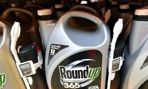 US jury orders Monsanto to pay $290mn to cancer patient over weed killer