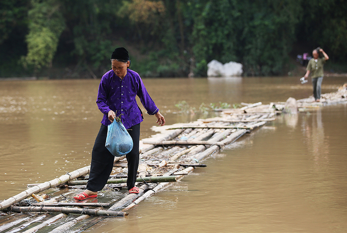 Villagers in northern Vietnam use bamboo to walk on water - 1