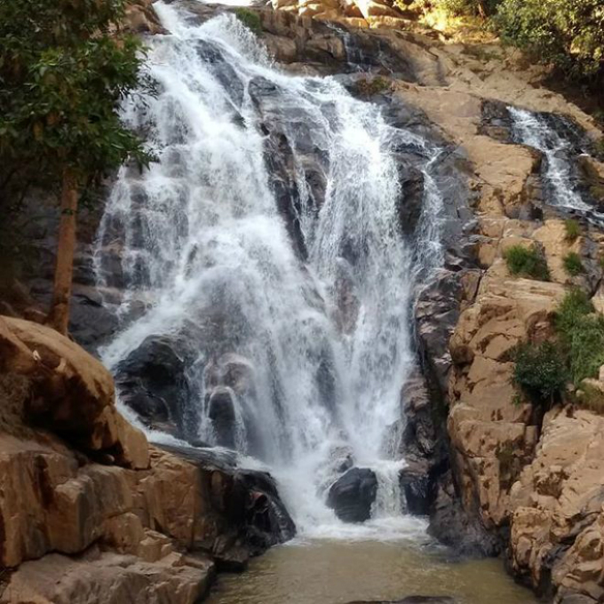 8 Things You Cant Miss When Visiting Dalat This Holiday - 6