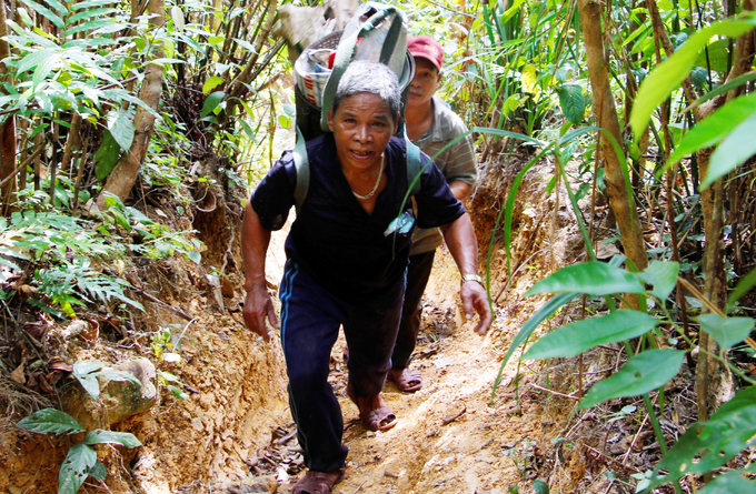 Tiem is an ethnic Katu whose cultural history dated back 3000 years. Katu is an ethnic minority among 52 other ethnic groups in Vietnam. The 40 years-old career takes place in the jungle as a mean to feed his family. To find bee hives, Tiem has to go on long and strenuous hiking.