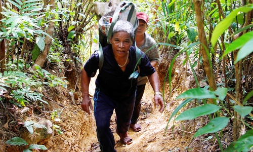 Hunting for honey in Vietnam's jungles