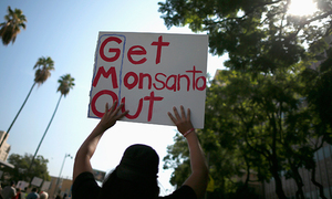 In Vietnam, Monsanto is guilty until proven innocent