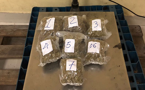 Gang caught using commercial airline to smuggle marijuana into Vietnam