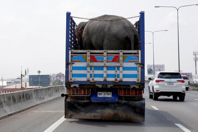 Myanmar-Thailand highway branded 'ecological and social disaster'