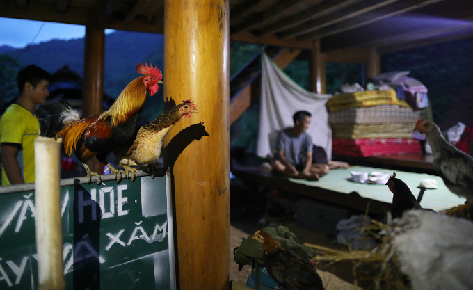 Poultry and cattle now live on the floor of the only concrete house in the commune. This house, also the only one that has electricity, is partly damage by the floods and has been the shelter for 16 people in the past ten days.