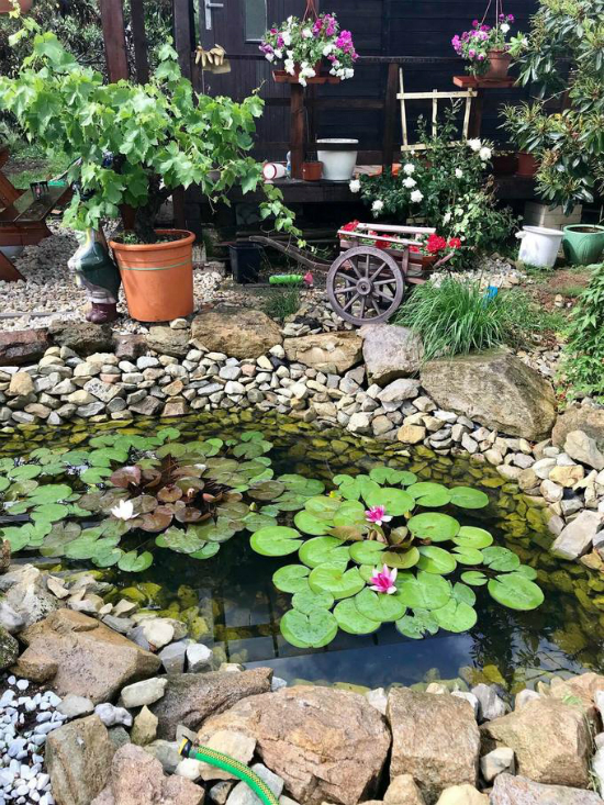 The garden is a gift from her husband, which she uses specifically as a sanctuary place for anything that reminds them of Vietnam. Photo courtesy of Vu Thanh Huyen.