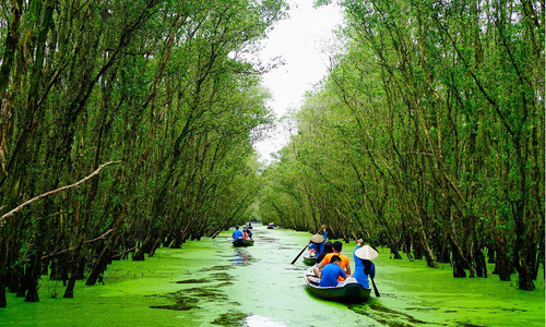 October adds luster to Vietnam's destinations