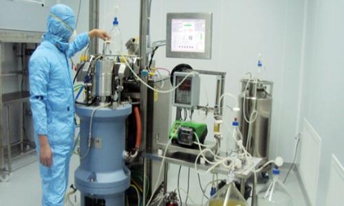 Vietnam set to launch indigenous swine, avian flu vaccines