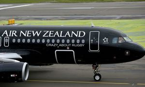 Air New Zealand grounds flights to Vietnam