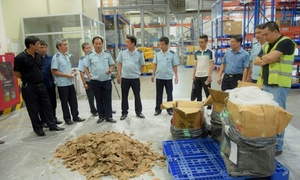 Vietnam finds a ton of pangolin scales, ivory in unclaimed baggage