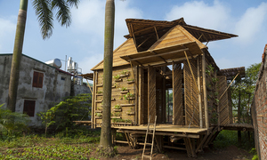Bamboo house wins prestigious German design award
