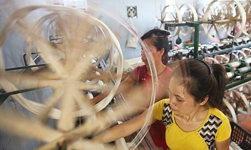 Silk production in Vietnam: from mulberry planting to silk worm farming