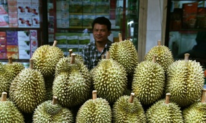 Passengers create stink over pungent planeload of durian