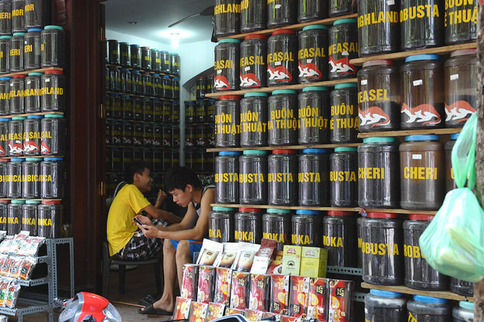 Robust demand for robusta to boost Vietnam's coffee exports