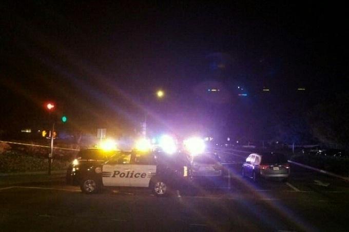 Gunman kills 12 in California bar packed with students
