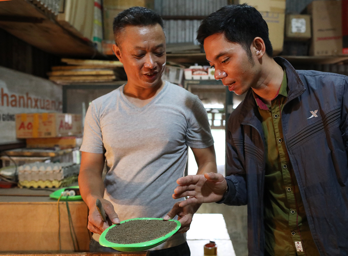 Cricket breeding goes hopping in Hanoi - 5
