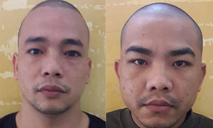 Vietnamese men jailed for stealing pet dog from foreigner