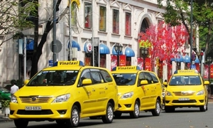 Transport giant to withdraw capital from leading HCMC taxi firm
