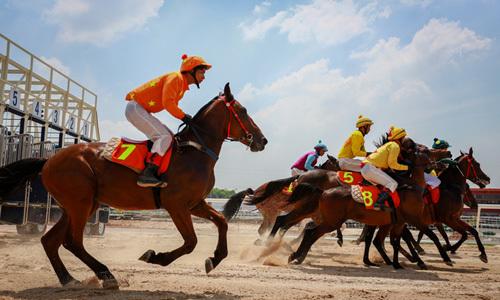 Hanoi revives $500 million horse racing, entertainment complex