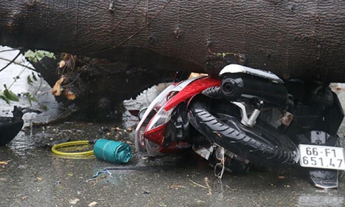 Falling tree kills man as Saigon streets get flooded again