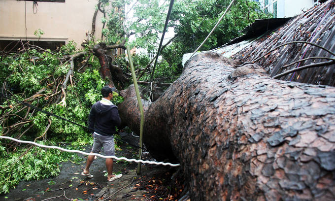 Storm Usagi devolves into tropical depression after making landfall in Vung Tau