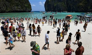 Paradise regained? Sharks return to Thai bay popularized by 'The Beach'