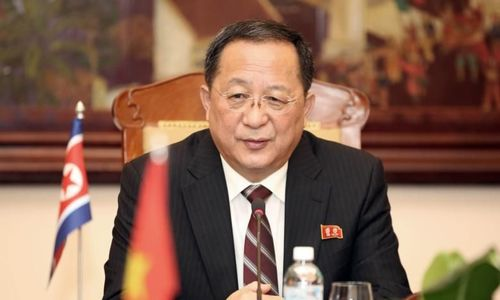 Vietnam offers to share development experience with North Korea