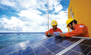 Solar power investment rush poses an overload risk