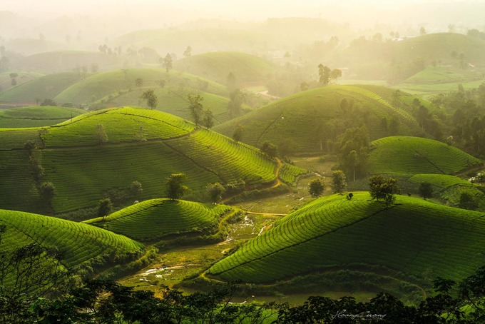 Stuff of dreams: stunning vistas of Long Coc tea hills - 6