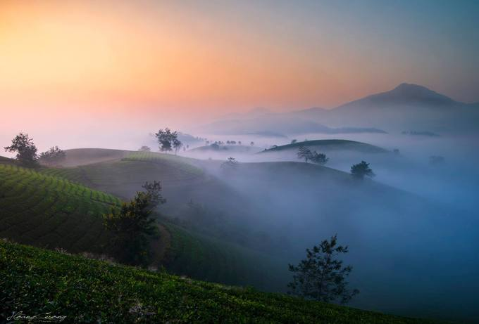 Stuff of dreams: stunning vistas of Long Coc tea hills - 3