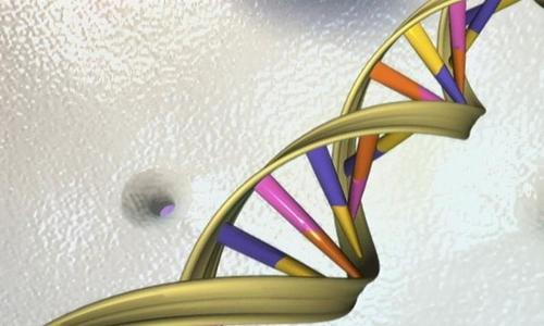 Vietnamese conglomerate to spend $4.5mil on genome sequencing project