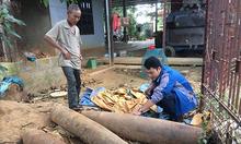 Scrap collectors' dance with death in central Vietnam's former battlefields