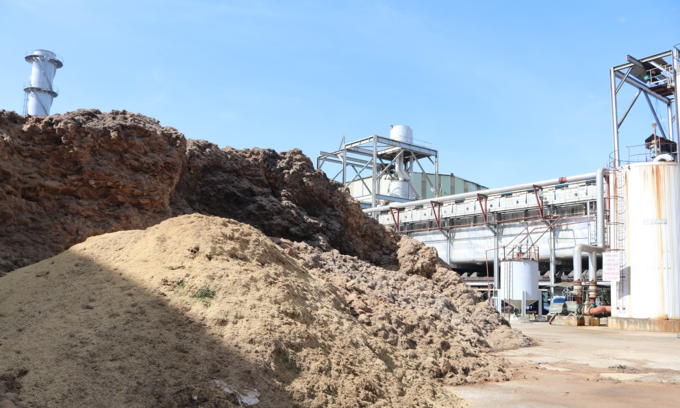 Vietnam has huge biomass potential, but policy tweak needed