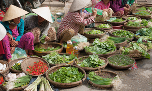 Vietnamese prefer fresh food by far to processed items