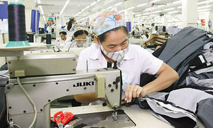 Gender equality good for business, Vietnamese firms told