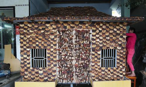 Man makes stilt house out of 200 kg of medicinal mushrooms