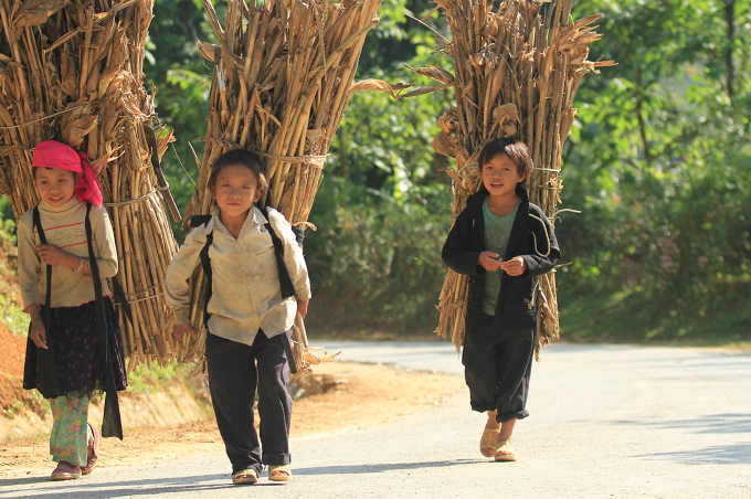 Children walk home after a day collecting firewood in Vietnams northern highlands. Photo by VnExpress/Ngoc Thanh