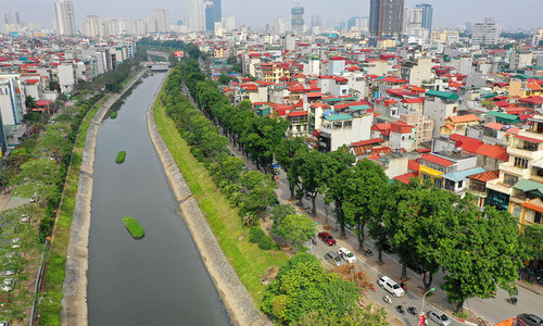 More trees to fall as Hanoi brings out ax again for road widening