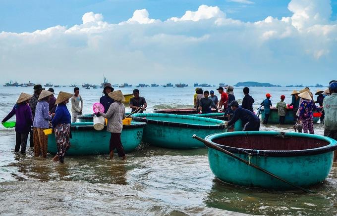 Vietnam mulls fishing ban as seafood resources dwindle