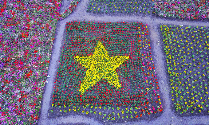 Vietnamese football fan says it with flowers, thousands of them - 2