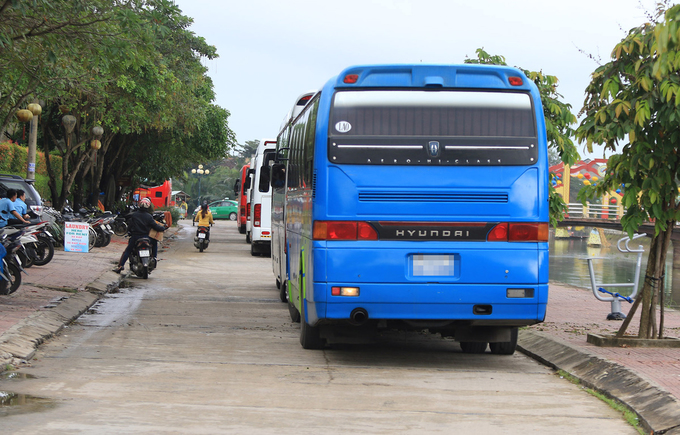 Popularity is its own enemy: Hoi An overrun by tourist buses - 2