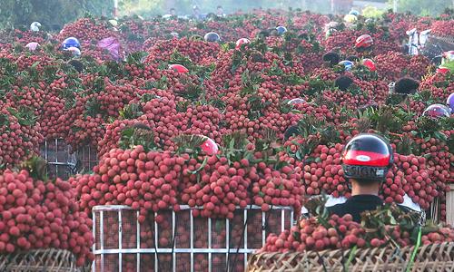 Vietnam trade deficit could balloon to $3 billion