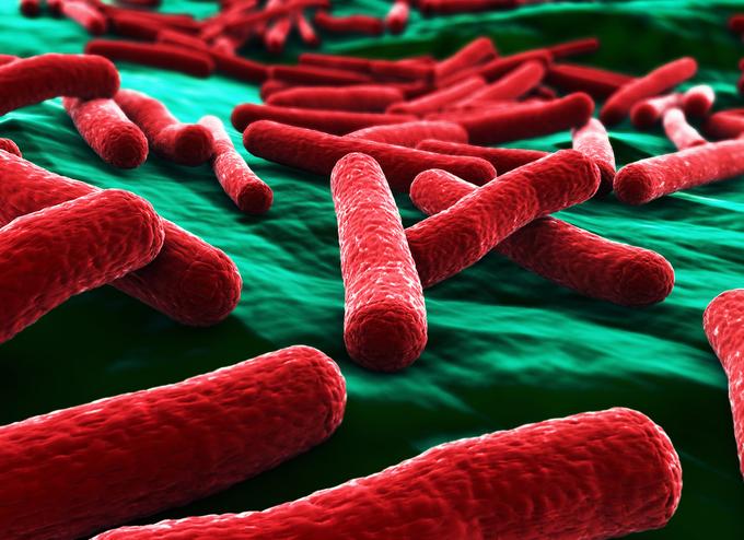70 percent of rural Vietnam community carries superbugs