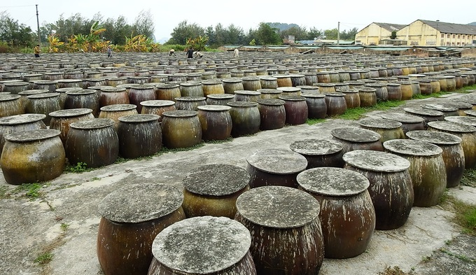 Sea to sauce: How traditional and special fish sauce in Vietnams Northern coast (unedited) - 1
