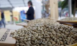 Vietnam Jan coffee exports likely to fall 19.1 pct y/y to 175,000 tonnes