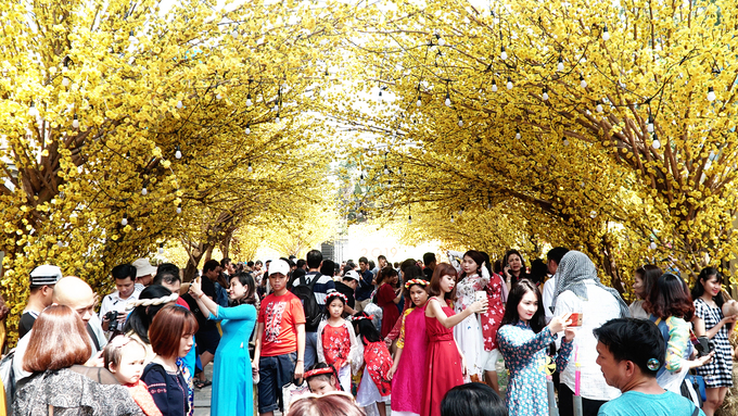 As Saigon blooms yellow, foreigners join multitudes on its streets - 1