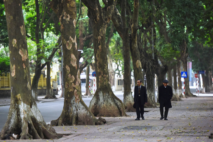 Deserted Hanoi, Saigon become oases of peace and quiet - 3
