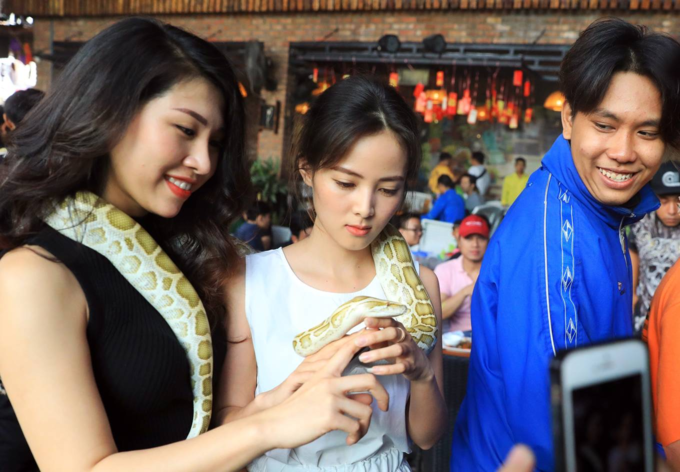 When Saigon youngsters bring out their pet reptiles - 6